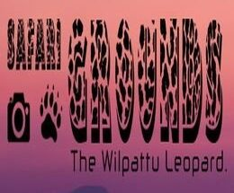 Safari Grounds The Wilpattu Leopard